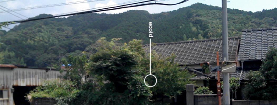 chris japan